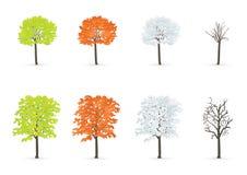 sezonów drzewa Obrazy Stock