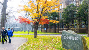Sezon jesienny w jesień hokkaida uniwersytecie Fotografia Royalty Free