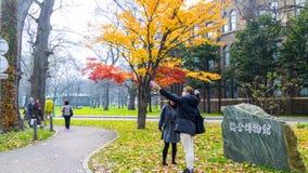 Sezon jesienny w jesień hokkaida uniwersytecie Zdjęcie Royalty Free