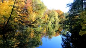 Sezon zmiany Kolorowy Spadać Opuszcza rzeki stroną obrazy stock