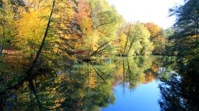 Sezon zmiany Spada liście rzeki stroną obraz stock