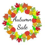 Sezonowej dużej jesieni sprzedaży biznesowy tło z barwionymi liśćmi _ wektor Fotografia Stock