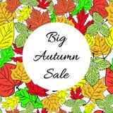 Sezonowej dużej jesieni sprzedaży biznesowy tło z barwionymi liśćmi _ wektor Obrazy Royalty Free