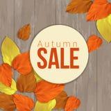 Sezonowej jesieni sprzedaży biznesowy tło, wektor Obraz Stock