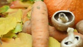 Sezonowi warzywa na liściach (jesień) zdjęcie wideo