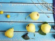 Sezonowy dekoracyjny skład, jesień, odgórny widok obraz stock