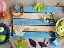 Sezonowy dekoracyjny skład kwiaty, liście i owoc, obrazy royalty free