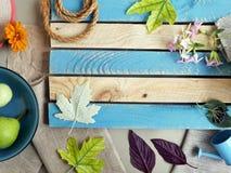 Sezonowy dekoracyjny skład kwiaty, liście i owoc, zdjęcia royalty free