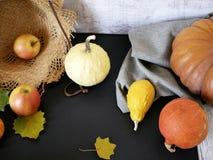 Sezonowy jesień skład od różnorodność bani, bonkret, jabłek, kolorów żółtych liści i słomianego kapeluszu, przygotowanie dla domo zdjęcie stock
