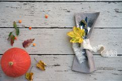 Sezonowy jesień stołu położenie z małą banią i spadkiem opuszcza jagody na pomarańcze i kolorów żółtych kolorach graficzny szczęś fotografia royalty free