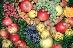 Sezonowy - jesieni owoc w łozinowym koszu na trawie, dziękczynienie, jesieni żniwo Obrazy Stock