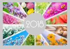 Sezonowy kalendarz dla 2018 rok Quarterly kalendarz księgowy zdjęcie royalty free