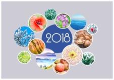 Sezonowy kalendarz dla 2018 rok Quarterly kalendarz księgowy Obraz Royalty Free