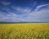 Sezonowy krajobraz obraz stock