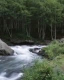 Sezonowy krajobraz zdjęcia stock