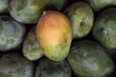Sezonowy owoc i warzywo fotografia royalty free