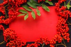 Sezonowy spadku pojęcie, jagody w ramie na drewnianym stole obrazy royalty free