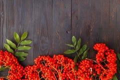 Sezonowy spadku pojęcie, jagody w ramie na drewnianym stole Fotografia Stock