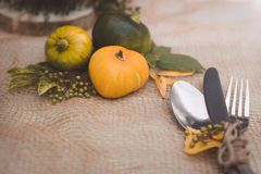 Sezonowy stołowy położenie z małymi baniami i liśćmi koloru żółtego i zieleni fotografia royalty free