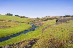 Sezonowy zatoczka bieg na zielenistej równinie północ stołu Halna Ekologiczna rezerwa, Oroville, Kalifornia obraz stock