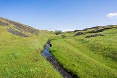 Sezonowy zatoczka bieg na zielenistej równinie północ stołu Halna Ekologiczna rezerwa, Oroville, Kalifornia obrazy royalty free