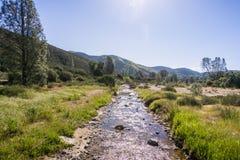 Sezonowy zatoczka bieg przez łąki, pinakle parki narodowi, Kalifornia zdjęcie stock