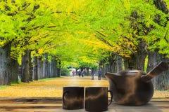 Sezonu jesiennego ginkgo liście w jesieni, Japonia Obraz Stock