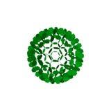 sfär 3d från partiklar abstrakt leafs Isolerat på vitbackgr Royaltyfri Bild