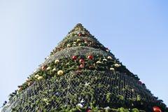 Sfärer på ettträd royaltyfri foto