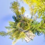 Sfäriska turist för panorama 360 grader 180 med en ryggsäckwalki Royaltyfria Bilder