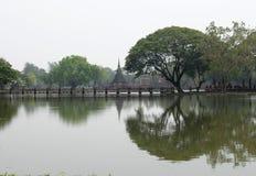 Sfäriskt träd Arkivfoto