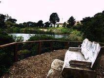 Sf de desatención del lago bench Imagen de archivo libre de regalías