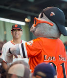 SF Giants Lou Seal Mascot Royalty Free Stock Image