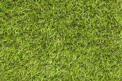 Sfałszowana trawa Zdjęcia Royalty Free