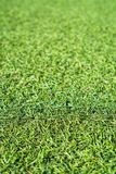 Sfałszowana zielona trawa zdjęcie royalty free