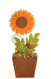 Sfałszowany słonecznik Obrazy Stock