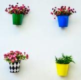Sfałszowany kolorowy kwiat w cynku obrazy royalty free
