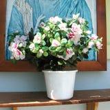 Sfałszowany kwiatu garnek Obrazy Stock