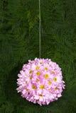 Sfera del fiore Fotografia Stock