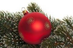 Sfera dell'albero di Natale con la filiale dell'abete Fotografie Stock Libere da Diritti