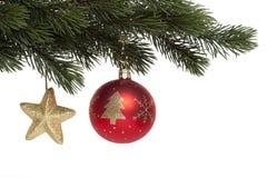 Sfera dell'albero di Natale sulla filiale dell'abete Immagine Stock Libera da Diritti