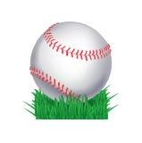 Sfera di baseball in erba Fotografia Stock