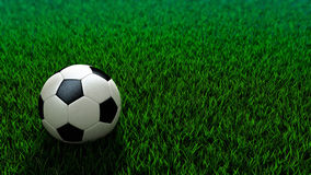 Sfera di calcio che si leva in piedi sul campo di erba Immagine Stock Libera da Diritti