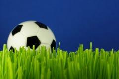 Sfera di calcio in erba Fotografie Stock