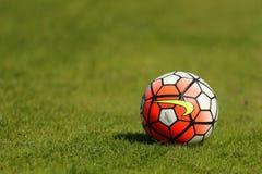 Sfera di calcio su erba verde Fotografie Stock