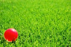 Sfera di colore rosa di erba verde Immagini Stock Libere da Diritti