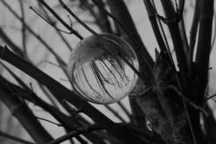 Sfera di cristallo in bianco e nero immagini stock