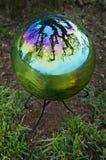 Sfera di cristallo con la riflessione dell'albero Fotografie Stock