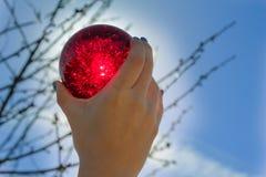 Sfera di cristallo rossa Immagine Stock Libera da Diritti