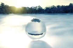 Sfera di cristallo su neve davanti a schiarimento della foresta Fotografia Stock Libera da Diritti
